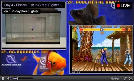 fishplaystreetfighterII